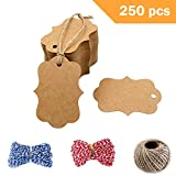 250 Pcs Kraft Paper Gift Tags with 3 Styles Crafts Twines - Paper Hang Tags Price Tags Candy Box Favor Hang Tags, Christmas Favor Party Supply Blank Cards, DIY Blessing Cards Greeting Card(Brown)
