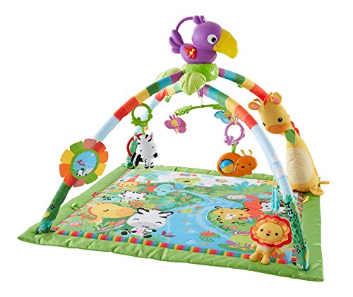 Find Discount Fisher-Price Music and Lights Deluxe Gym, Rainforest