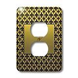 3dRose lsp_36090_6 Elegant Letter L Embossed In Gold Frame Over A Black Fleur-De-Lis Pattern On A Gold Background 2 Plug Outlet Cover