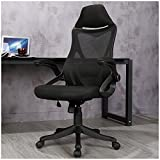 Veigar Ergonomic High Back Mesh Office Chair with Adjustable Armrest Lumber Support, Computer Chair Desk Chair Task Chair Swivel Chair (Black)