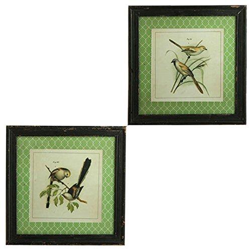 18 Bird Print - Set of 2