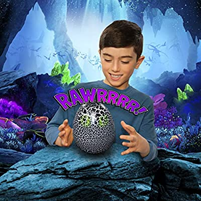 DWD ML Hatching Toothless: Toys & Games