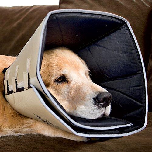 Comfy Cone All Four Paws - E-Collar - Dog/Puppy  Head Collar