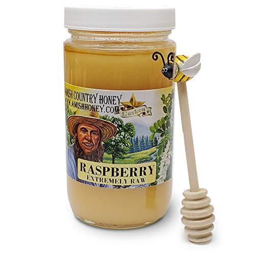 Goshen Honey Amish Extremely Raw RASPBERRY Blossom Honey 100% Natural Honey Health Benefits Unfiltered OU Kosher Certified | Glass Jar 1 Lb