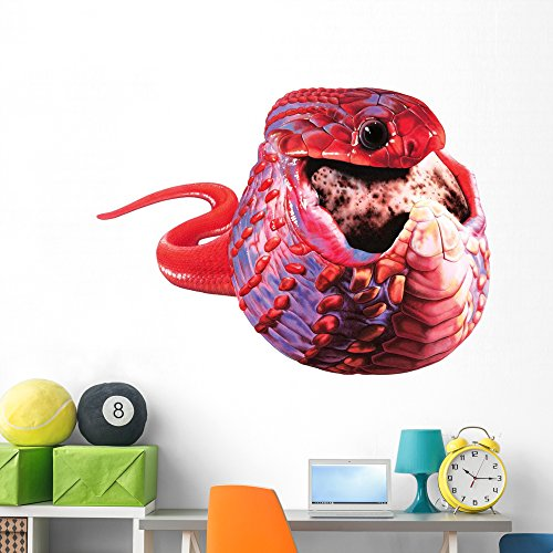 Eating Snake - African Egg-eating Snake Wall Decal by Wallmonkeys Peel and Stick Graphic (60 in W x 45 in H) WM275743