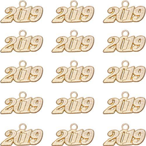 Mayam 15 Pieces 2019 Year Charm Graduation Charm Pendants for Graduation Tassel DIY Crafts (Gold)