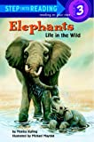 Elephants: Life in the Wild (Step-Into-Reading, Step 3)