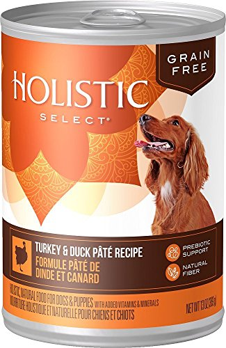 Holistic Select Natural Wet Grain Free Canned Dog Food, Turkey & Duck Pâté Recipe, 13-Ounce Can (Pack of 12) For Sale