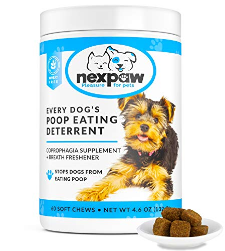 NEXPAW Stop Dogs from Eating Poop – Coprophagia Stool Eating Deterrent Will Stop Dogs from Eating Poop & Aid with Bad Breath – Tasty Wheat Free Soft Chews Made in USA