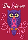 Toland Home Garden Believe 12.5 x 18 Inch Decorative Pink Breast Cancer Ribbon Support Owl Garden Flag