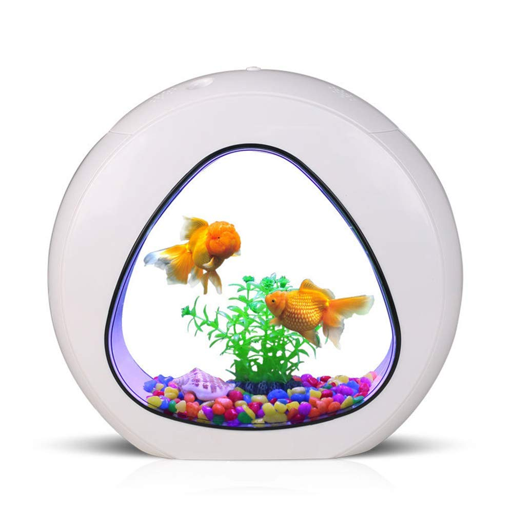 GankPike 1 Gallon Fish Aquarium Betta Fish Tank Betta Fish Bowl with Filter, Air Pump by GankPike