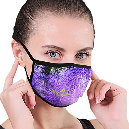 Dust Mask Purple Wisteria Antiviral Face Mask Cover Anti-dust Reusable Windproof Half Face Mouth Warm Masks for Ski Bicycle Cycling Motorcycle Women Men
