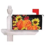 Evergreen Pumpkins and SunflowersMagnetic Mailbox Cover, 18 x 20 inches