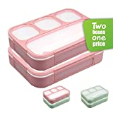 New Lunch Boxes - Best Reviews Guide