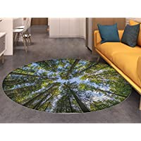 Nature Round Area Rug Wild Jungle Moss Forest Crown Trees Leaves Nature Photo Artwork Print Living Dinning Room & Bedroom Rugs Sky Blue and Forest Green
