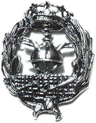 Alylosilver Insignia Profesional de Empresariales Pin para Hombre Mujer en Plata 925 con Caja para Regalo.