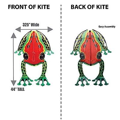 WindnSun Rainforest DartFrog Nylon Kite-44 Inches Tall: Toys & Games
