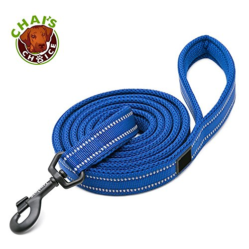 Chais Choice Best Padded 3M Reflective Outdoor Adventure Dog Leash. Perfect Match Front Range and Service Dog Harness. (44 Large, Royal Blue)
