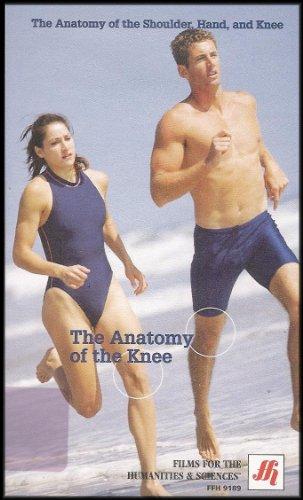 The Anatomy of the Knee ()
