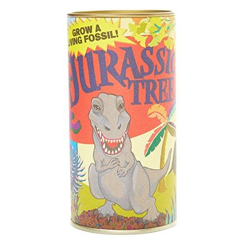 Jurassic Tree (Dawn Redwood) | Seed Grow Kit | The Jonsteen Company