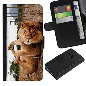 EuroCase - Samsung Galaxy S3 MINI NOT REGULAR! I8190 I8190N - Cute Funny Lion Playing - Cuero PU Delgado caso cubierta Shell Armor Funda Case Cover