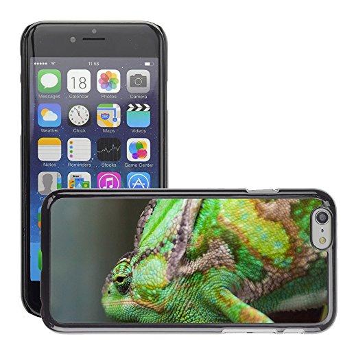 "Bild Hart Handy Schwarz Schutz Case Cover Schale Etui // M00135664 Grünes Chamäleon Reptil Tier // Apple iPhone 6 PLUS 5.5"""