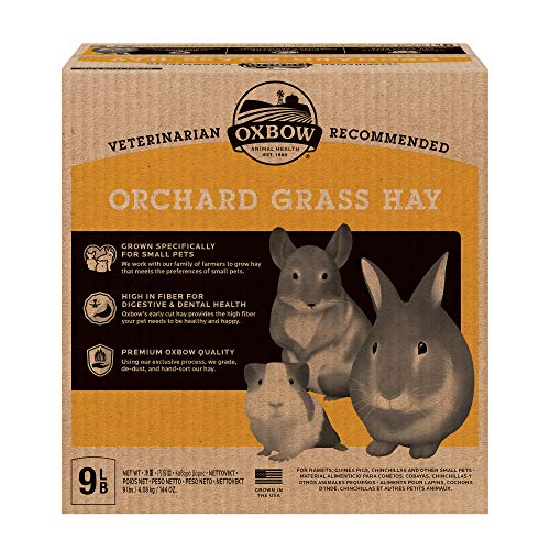 Oxbow Animal Health Orchard Grass Hay – All Natural Grass Hay for Chinchillas, Rabbits, Guinea Pigs, Hamsters & Gerbils