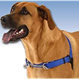 WaggWalker Dog Walking Communication Harness