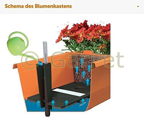 Blumenkasten Bergamot Balkonkasten 50 cm anthrazit