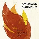 Burn.Flicker.Die by American Aquarium (2012-09-04)