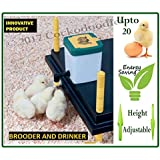 WP25 Chick Brooder With 500ml Nipple Drinker
