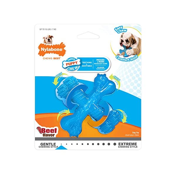 "Nylabone Puppy ""X"" Bone Small Beef Flavored Chew Toy"