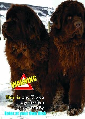 Achtung Vorsicht Vor Spass Fun Schild Hund Neufundlander Hund