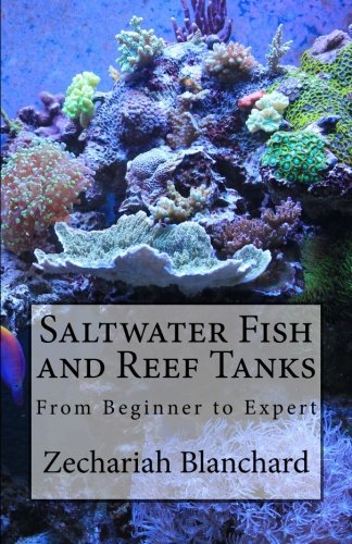 Saltwater Fish And Reef Tanks  From Beginner To Expert