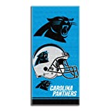 The Northwest Company NFL Carolina Panthers Double Covered Beach Towel, 28 x 58-Inch