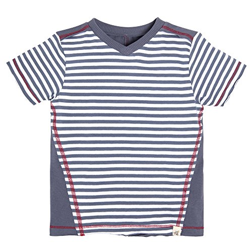 Burt's Bees Baby Baby Boys' T-Shirt, Short Sleeve V-Neck and Crewneck Tees, 100% Organic Cotton, Prairie Blue Stripe, 3-6 Months