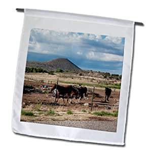 Jos Fauxtographee Realistic - Horse standing with some running in the back at a farm in Veyo, Utah - 18 x 27 inch Garden Flag (fl_61321_2)