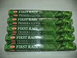 Hem First Rain 100 Incense Sticks (5 x 20 stick packs)