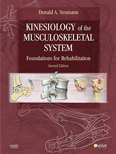 Kinesiology of the Musculoskeletal System Foundations for Rehabilitation (2nd 2013) [Neumann]