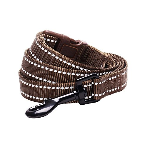 Picture of Blueberry Pet 6 Colors Durable 3M Reflective Classic Dog Leash 5 ft x 3/4
