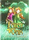 Download Fairy Oak El Secreto De Las Gemelas in PDF ePUB Free Online