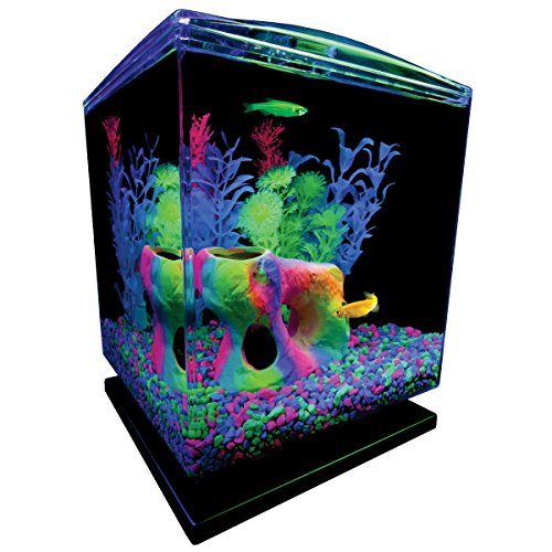 GloFish 1.5 Gallon Aquarium Kit with Hood, LEDs and Whisper Filter ()