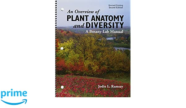 Amazon An Overview Of Plant Anatomy And Diversity A Botany Lab