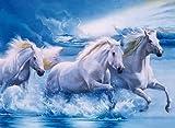Clementoni Majestic Stallions 1000 Piece Horses Jigsaw Puzzle