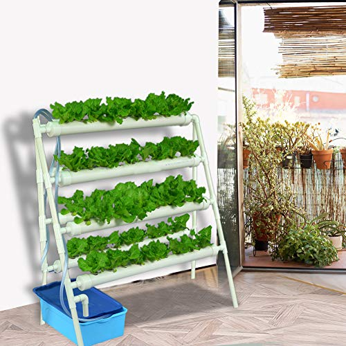 - Double Side Hydroponic Grow Kit, PVC Pipe Plant Site Water Culture Garden Plant Growing System Grow Kit Rack for Fresh Leafy Vegetables (72 Sites)