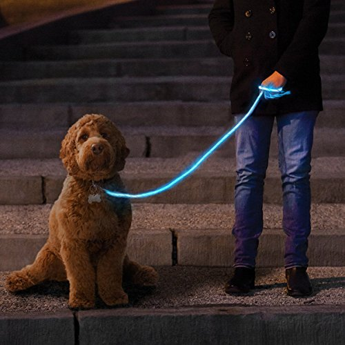 NiteyLeash - LED Glow in The Dark Pet Dog Leash (Blue) (Leash Light)