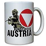 Armed AUSTRIA Austria Austrian Steyr AUG