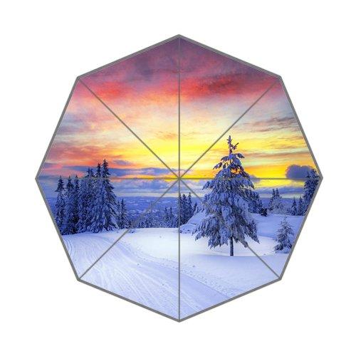 自然風景Landscapeノルウェー冬雪日北ヨーロッパ折りたたみ式傘 B01MTJD1A0 B01MTJD1A0, (税込):dfebd9cd --- ijpba.info
