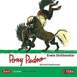 Pony Pedro Hörbuch