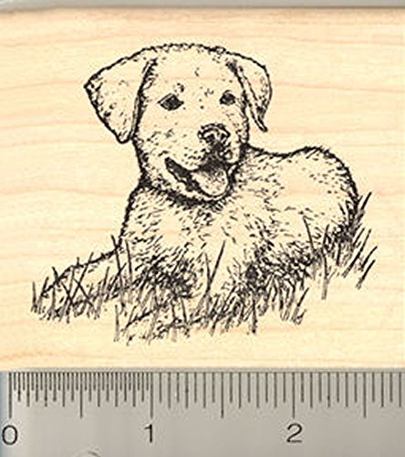 ubber Stamp, Lab Puppy Dog ()